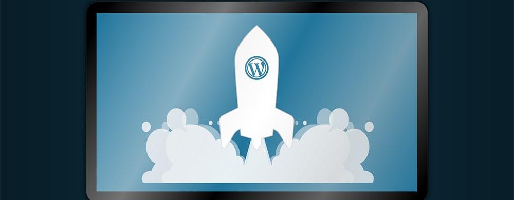Новые реализованные проекты на wordpress